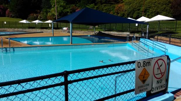 Duck Duck Pool